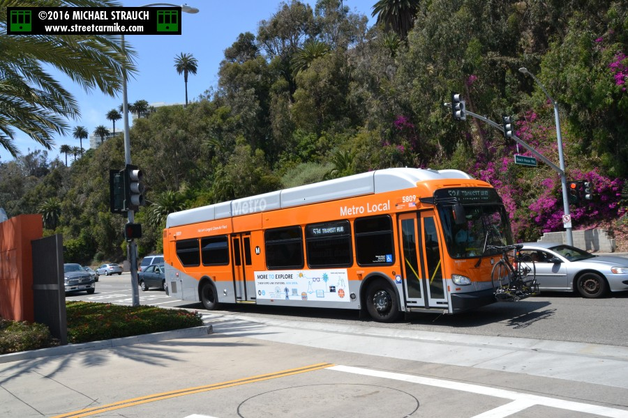 Los Angeles Metro New Flyer Xcelsior Xn40 Buses 3850 4199
